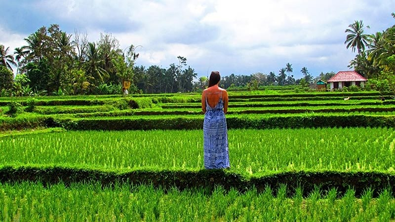 Travelling alone in Bali: Enjoy the beauty of nature alone